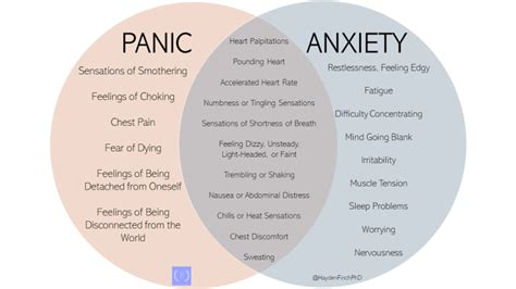 panic attacks  anxiety attacks hayden finch phd