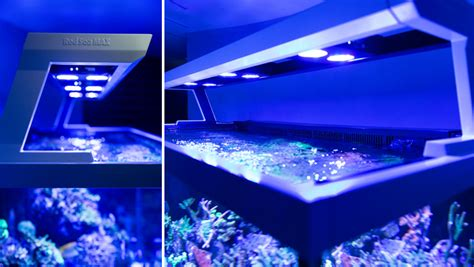 les a led sea max s series fully featured reef spec reef aquariums
