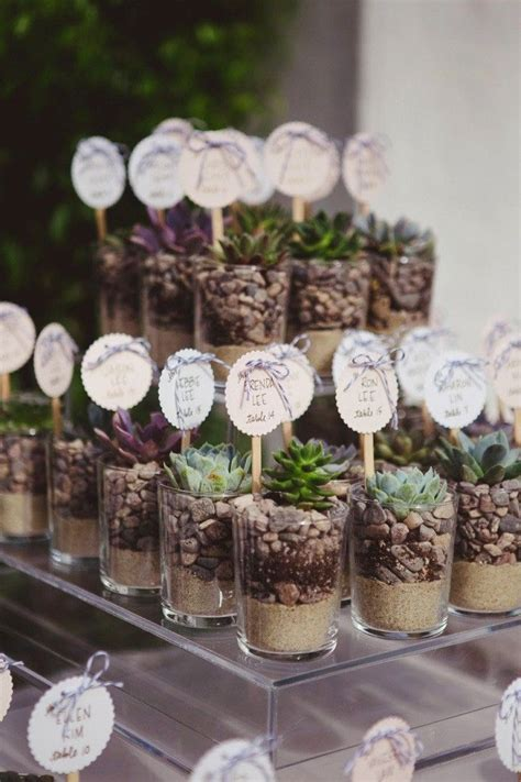 25  best ideas about Plant wedding favors on Pinterest