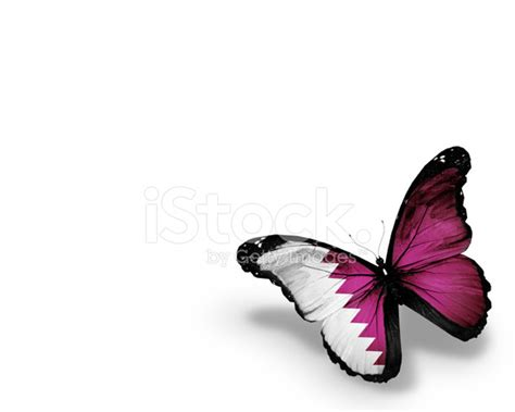 Gamis Buterfly Premium White Pasmina qatari flag butterfly isolated on white background stock photos freeimages