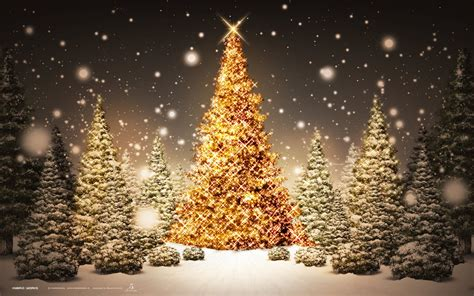 christmas tre christmas tree background wallpaper 1920x1200 79330