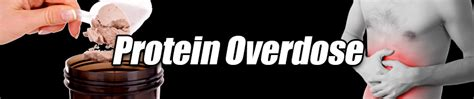 protein overdose protein overdose mr supplement australia