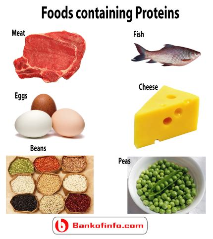 protein vitamins do you the benefits proteins fats carbohydrates