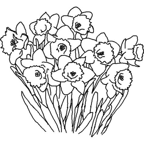 clipart of flowers coloring pages spring clip art free black and white clipart best