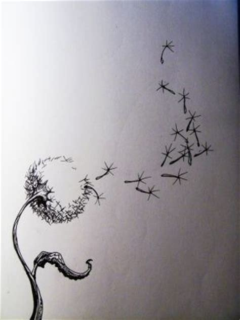 Tattoo Contact Paper | dandelion draw on contact paper art inspiration