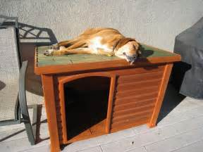 Indoor Dog House » Ideas Home Design