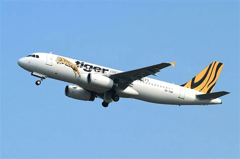 Budget Airline Tiger Airways To Fly To Perth Australia by Budget Flights To Yogyakarta And Bandung By Tiger Airways