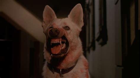 se filmer la possession de hannah grace white dog 1982 drinking game movieboozer