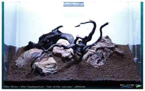 Pupuk Dasar Alami Untuk Aquascape cara membuat aquascape aquascape design jakarta