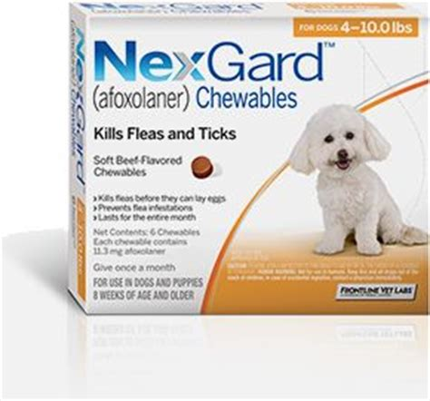flea and tick pill for dogs 1000 images about heartworm flea tick preventatives on for dogs for