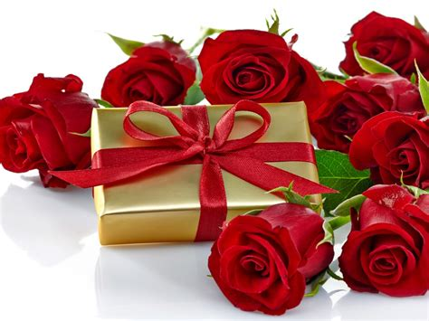 roses romantic love gift bow nature flowers hd wallpaper