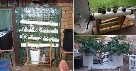 homemade hydroponic systems diy hydroponic gardens