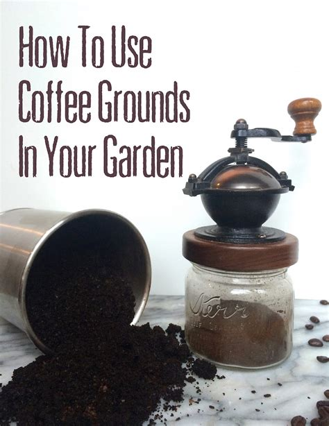 How To Use Coffee Grounds In The Garden by All About Hugelkultur The Ultimate Raised Garden Bed