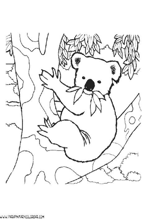 dibujos para colorear koala dibujos de koalas 02