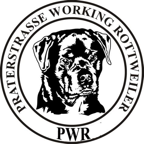 prater puppy kennel www vongolden net links