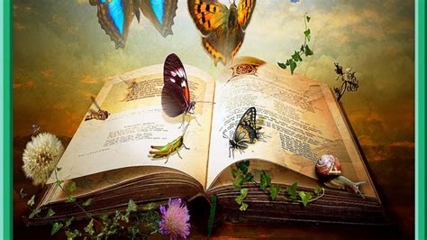 libro mystical a fantasy the book of knowledge wallpaper and background image 1366x768 id 448944