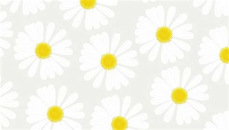 daisy wallpaper pinterest daisy desktop wallpaper office tech stuff pinterest
