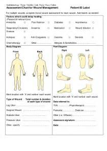 assessment chart for wound management patient id lab