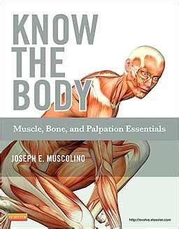 libro the body in the libros sobre anatom 237 a efisioterapia