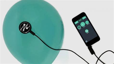Jepit Pita Anak Sapi Moo merubah benda sekitar menjad artikel musik