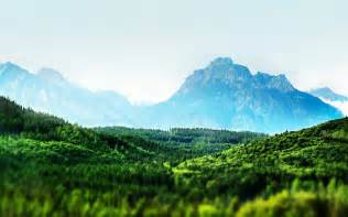 : The Wallpaper above is Tilt shift forest landscape Wallpaper