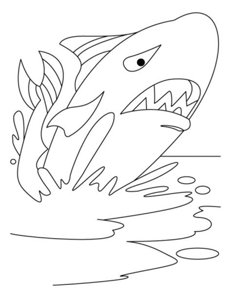 coloring pages water animals 32 best images about water animals coloring pages on