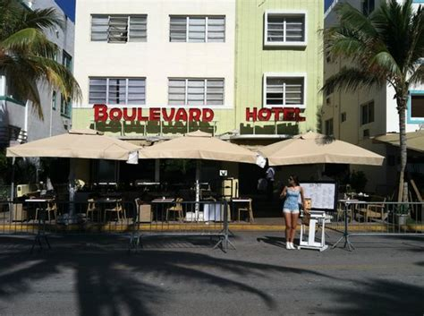 sea cafe miami flamingo lummus restaurant