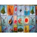 loteria mexican bingo vinyl shower curtain 03 23 2008