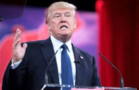 donald trump facts top 10 facts about donald trump