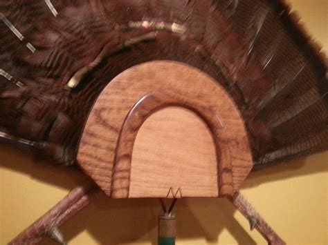 diy turkey fan mount mouth call turkey plaque by dave church lumberjocks