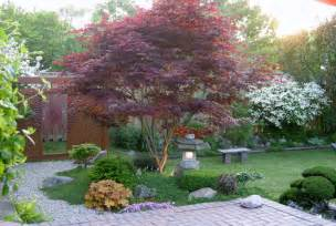 Patio Japanese Maple 5 Best Behaved Trees To Grace A Patio