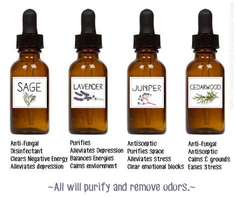 Detox Juice Recipes Aura by Aura Cleansing Spray Recipe Besto