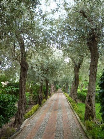 panarea giardini naxos panarea giardini naxos italien omd 246 tripadvisor