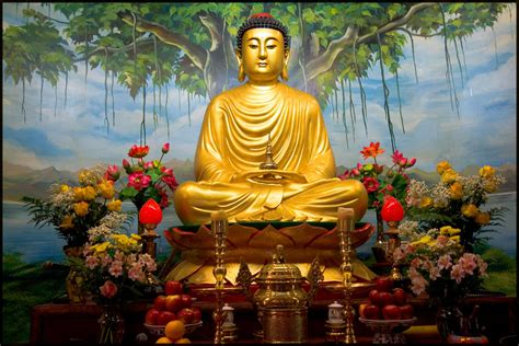 le buddha siddhartha gautama buddha quot you can search throughout the e flickr