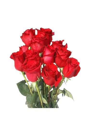 imágenes de rosas rojas naturales ramo de rosas imagenes ramo de rosas rojas x with ramo de