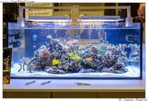 Pompa Hidram Aquarium interzoo 2014 sicce reefs