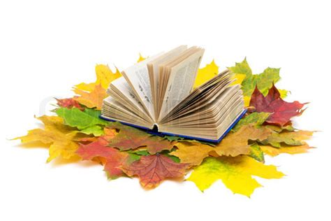 libro autumn is here what s new for october at wakefield books