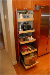 Pull Out Pantry Cabinet Dimensions Home Design Ideas Pull Out Shelves For Kitchen Cabinets
