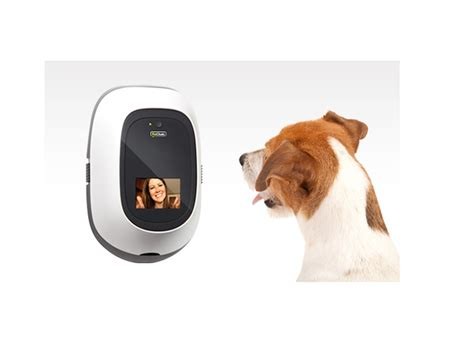 new technology for dogs technology is catching up with dog lovers