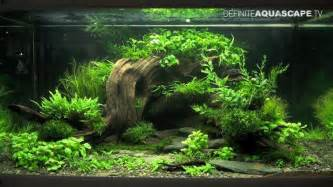 aquascaping the of the planted aquarium 2013 xl pt 2