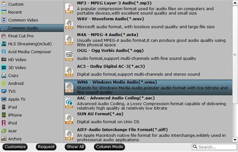 format audio wma 187 windows media player 12 playing ogg audio
