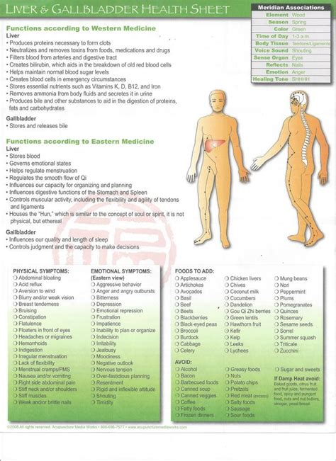 Detox Energy Meridians by 271 Best Meridians Energy Pathways Images On