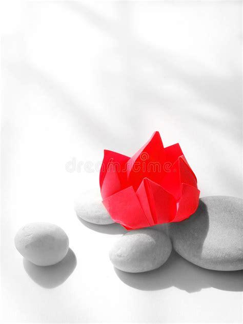 fiore di loto rosso fiore di loto rosso origami di carta con i ciottoli