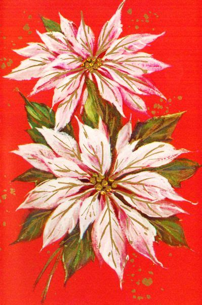 images  flowers poinsettia  pinterest christmas art tis  season  watercolour