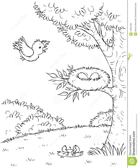 coloring page of an eagle s nest top 85 nest coloring pages free coloring page