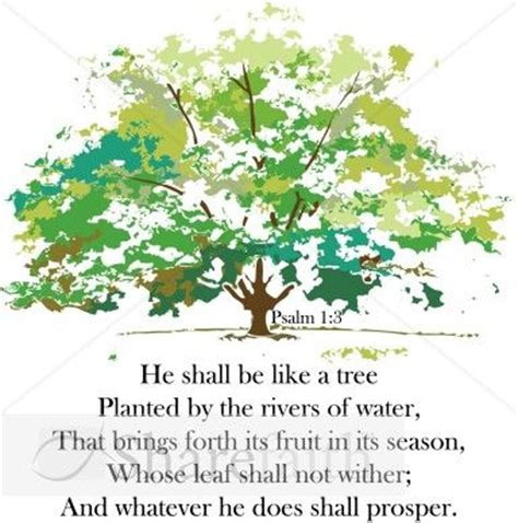 scripture tree psalms a tree and trees on