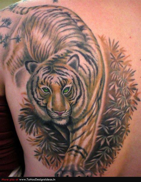 tattoo tiger body tiger tattoo images designs