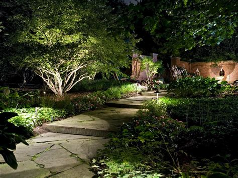 decorative landscape lighting how to illuminate your yard with landscape lighting hgtv