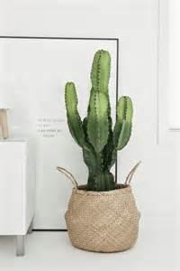 Home Design 3d Gold Stairs 13 tips s 229 inreder du med trendiga kaktusen elle decoration