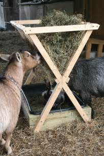 Automatic hay feeders for goats building ahay feeder http www grit
